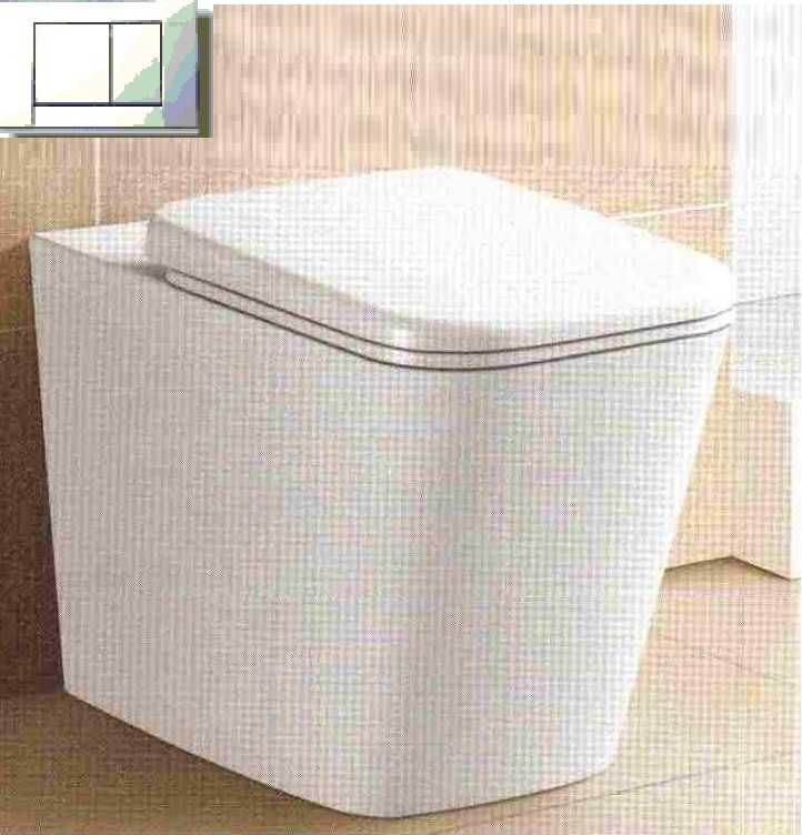 Amore Floor Pan and Geberit Cistern (include Dual Flush Push Plate)