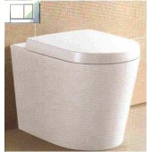 Bella Floor Pan and Geberit Cistern (include Dual Flush Push Plate)